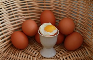 eggs-white