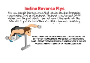 Incline Reverse Flys